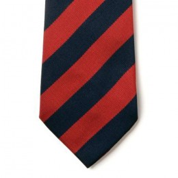 Striped Ties - Navy & Red