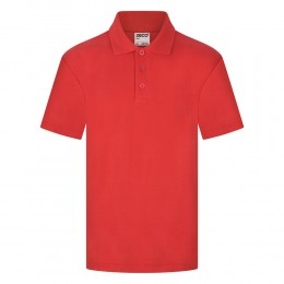 Polo Shirt (Colours)