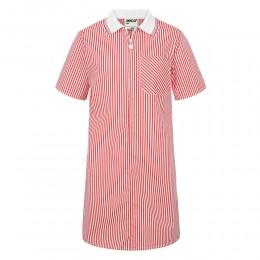 A-Line Striped Dress
